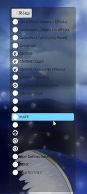 SS-mate-006.jpeg